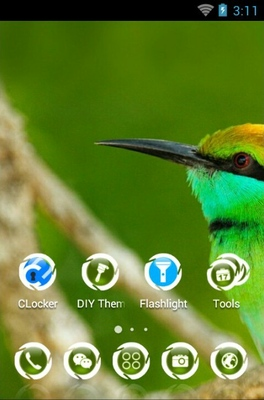 Green Bee Eater android theme home screen