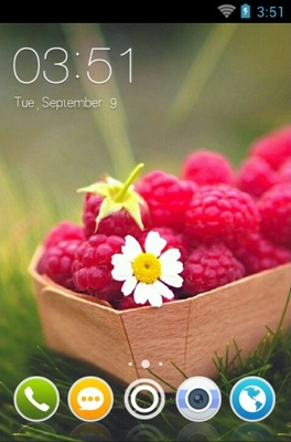android theme 'Raspberries'