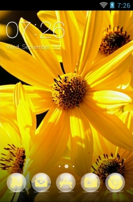 android theme 'Margarita Flower'