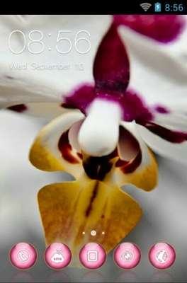 android theme 'Lovely Orchid'