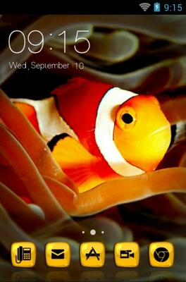 android theme 'Amphiprioninae'
