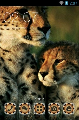 android theme 'Cheetah'