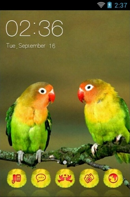 android theme 'Love Birds'