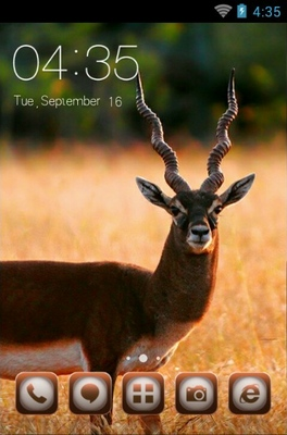 android theme 'Black Deer'