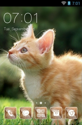 android theme 'Cute Cat'