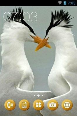 android theme 'Arctic Tern'