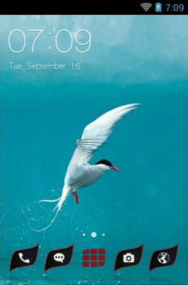 android theme 'Red Billed Seabird'