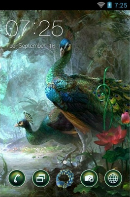 android theme 'Beautiful Peacock'