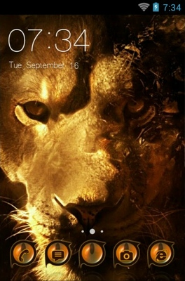 android theme 'Asiatic Lion'