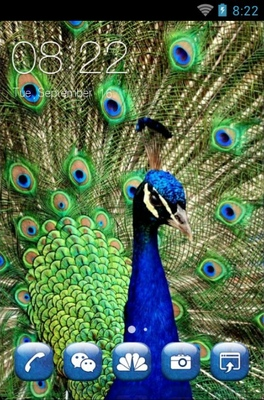 android theme 'Peacock'
