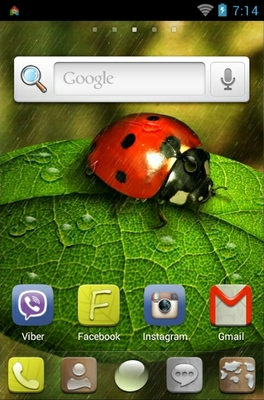 Ladybug android theme home screen
