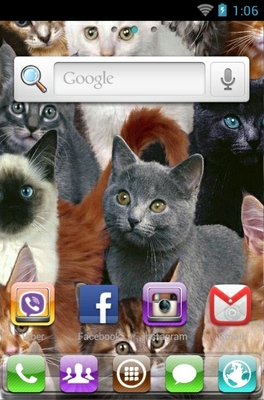 Cute Cats android theme home screen