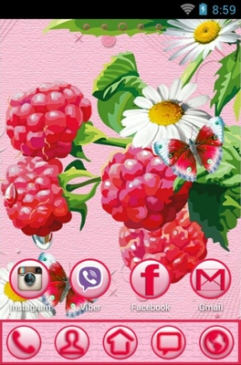 Berries android theme home screen